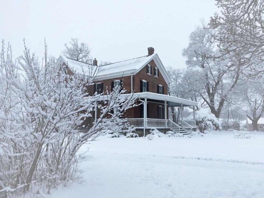 Snow at Maplehurst