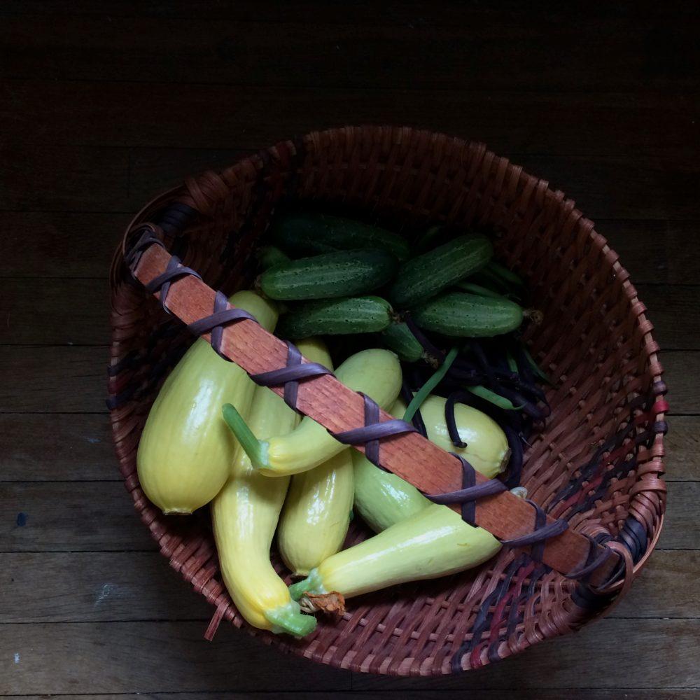 Garden Harvest: Still Life