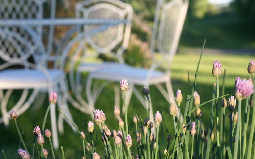 Gardenbound: A Maplehurst Tour
